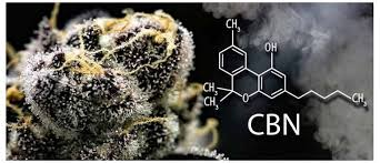 Image result for CBN (Cannabinol): images
