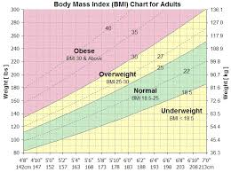 Bmi Chart Women Bmi Chart For Men Women Kids And Adults Check Your Bmi