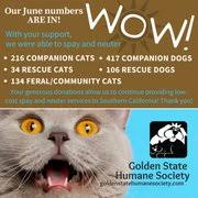 waiting photo of golden state humane society garden grove ca united states
