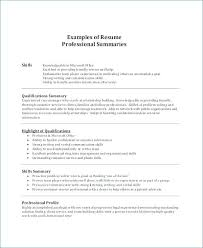 Summary Of Qualifications Resume Unique Ability Summary Resume Examples Example Of Resume Qualifications