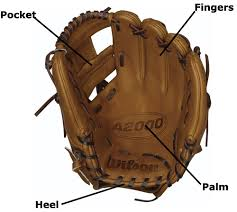 Baseball And Softball Glove Buying Guide