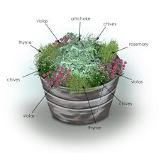 Plant This Herbs And Artichoke Container Garden Complete With Container Herb Garden Plans