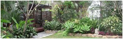 Small Picture Best Small Tropical Garden Ideas Pictures Home Design Ideas