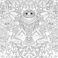 Small Picture Owl Coloring Page Adult Coloring Club