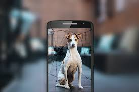 fido device protection