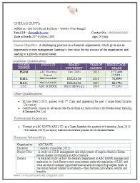 Sample Resume Format For Mba Finance Freshers Earpodco Delectable Mba Finance Fresher Resume Format