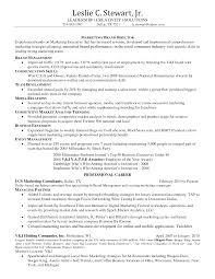 Marketing Skills Resume Free Resume Example And Writing Download