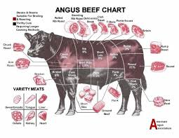 beef cuts diagram poster. Perfect Diagram 320 Best Ag Production Images On Pinterest Beef Cuts Chart Poster Throughout Diagram F