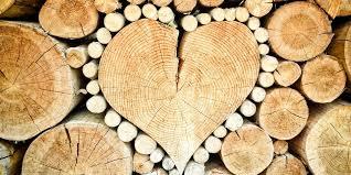 Sparsam Heizen Mit Einem Holzofen Werke Energie Effizienz