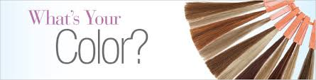 Wig Colors Selection Of Hair Color Hue Choices For Women