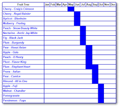 Blackberry Ripening Chart Fruit Trees Archives Page 2 Of 4 Alden Lane Nursery