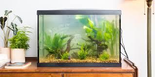 best fish tanks 2020 heater light