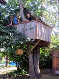 Image Playhouse Instructables How To Build Treehouse 17 Steps with Pictures