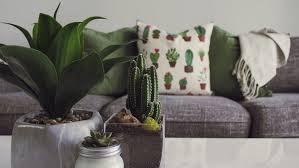 eco friendly home decor