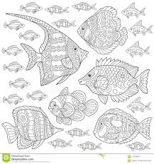 Zentangle Fish Collection Stock Vector Illustration Of