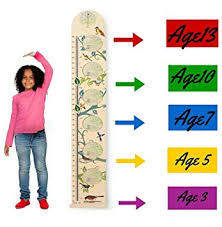 Kids Wall Wooden Growth Height Chart Hanging Ruler For Children Easy To Move Fold Able Nursery Decal From Happybaby Happyyou With Picture Frames