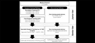 Flowchart Outlines Grades Of Doctor In Postgraduate Surgical