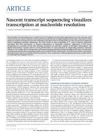 pubs churchman lab nascent transcript sequencing visualizes transcription at nucleotide resolution
