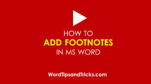 Video How Do I Add Footnotes To Ms Word Documents Ms Word Tips