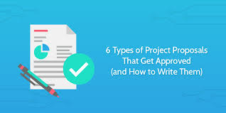 Project Proposal Presentation 6 Types Of Project Proposals That Get Approved And How To