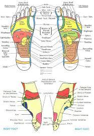 Reflexology Chart Head To Feet Reflexology Foot Chart