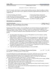 Senior Executive Resume Sample5 With Functional Vighneswarraocom