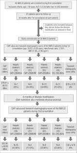 Flow Chart Showing The Process For Enrollment Of Patients