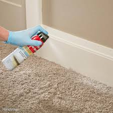 what to use to kill bed bugs spray bug