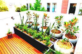 container garden plans. patio vegetable garden plans where to build a container gardens growing in apartment ideas