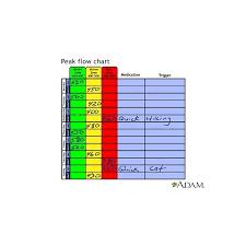 Asthma Zone Chart Peak Flow Meter Chart Child Use Of Peak Flow Meter Charts