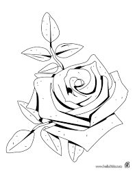 Small Picture Rose american beauty coloring pages Hellokidscom