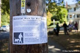 community remembers man struck by motorist calls for safer community remembers man struck by motorist calls for safer streets during memorial walk across capitol hill chs capitol hill seattle