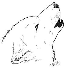 wolf howling drawing head. Simple Head Howling Wolf Head Drawing Great Stuff On B