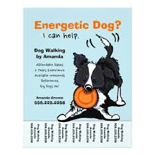 Dog Flyer Template Free Dog Walking Flyers Templates Dog Flyer Template Free Templates Dog