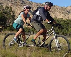5 000 reward for stolen custom tandem bike
