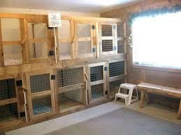 indoor dog kennel ideas outdoor grad diy