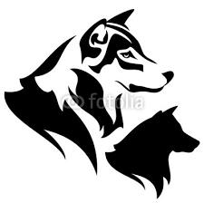 Disegno In Bianco E Nero Vettore Lupo Profilo Testa Manifesti Da