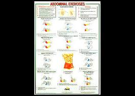 Abs Exercise Chart Professional Fitness Wall Chart Abdominal Exercises Abs Workout Wall Poster Ebay