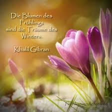 Frühlingssprüche Kurze Sprüche über Den Frühling