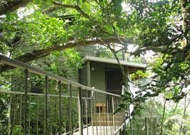 Hidden Canopy Treehouses Costa Rica U2013 Bontaks TravelsTreehouse Monteverde Costa Rica