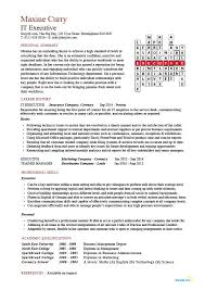 Technical Skills On A Resumes It Executive Resume Example Sample Technology Technical