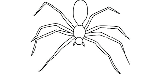 Spiderman Template Printable Spider Template To Print Web Cutouts Free Diagram