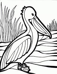 Small Picture Adult birds coloring page Bird Coloring Pages Kids Bird 4 Picsbyk