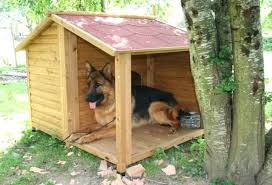 best outdoor dog kennel design how to choose the o gardens an