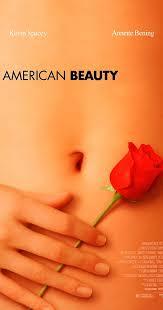 american beauty plot summary imdb