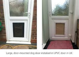 doggie door installation 1 tucson pet to install in glass melbourne doggie door installation