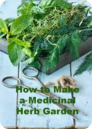 Small Picture Make a Medicinal Herb Garden Pinteres
