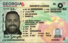 Driver Georgia Services Of Department