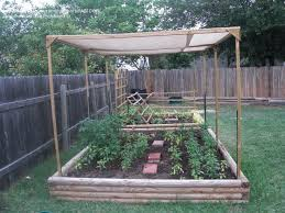 Small Picture Best 25 Gardening direct ideas on Pinterest Identify plant
