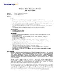 Job Wining Channel Sales Catering Sales Manager Resume For
